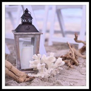 lanterns coral driff