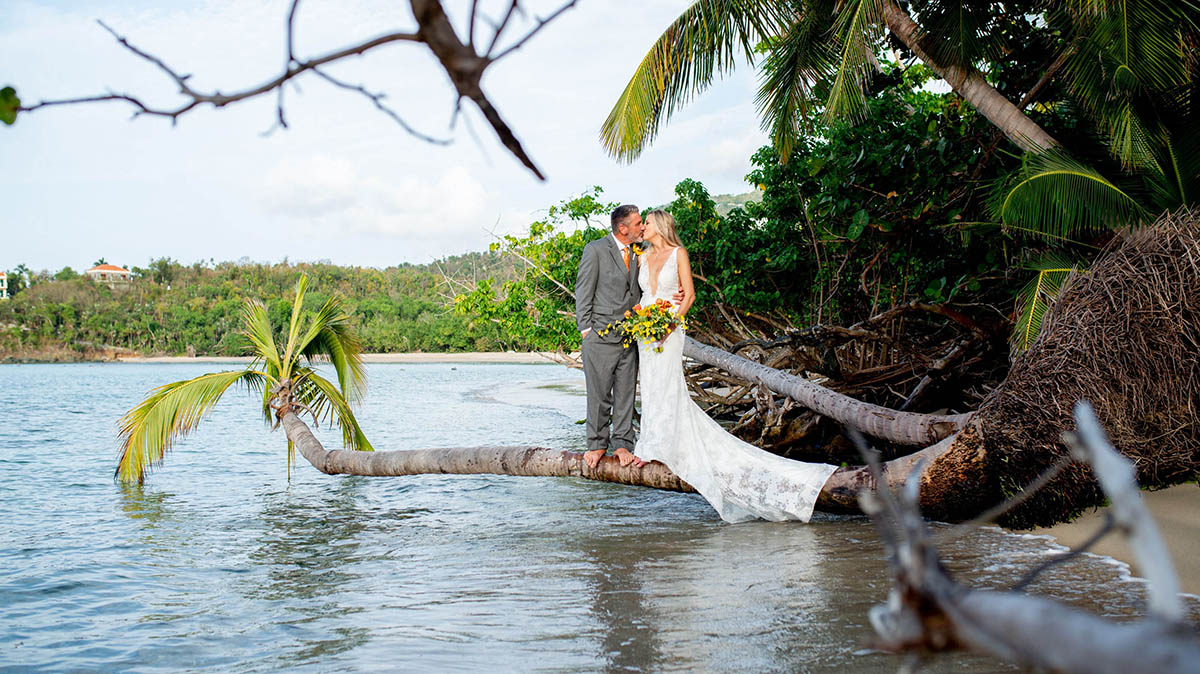 Married couple kissing barefoot on a palm tree overhanging the beautiful waters of St. Thomas.