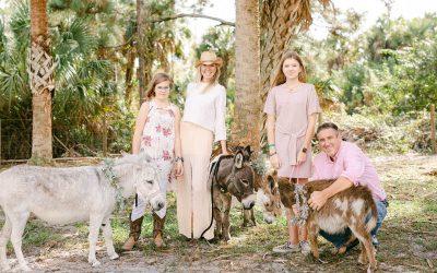 St. Thomas Beer Burros Or Wedding Donkeys